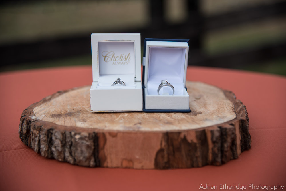 TerriJodi_Wedding_Vendors online-10.jpg