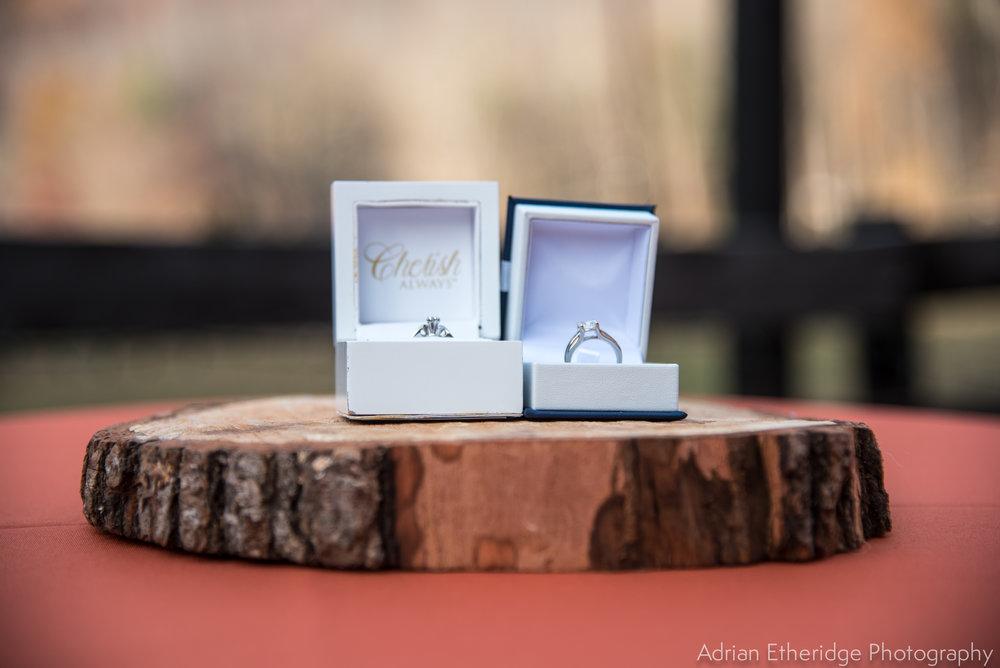TerriJodi_Wedding_Vendors online-16.jpg