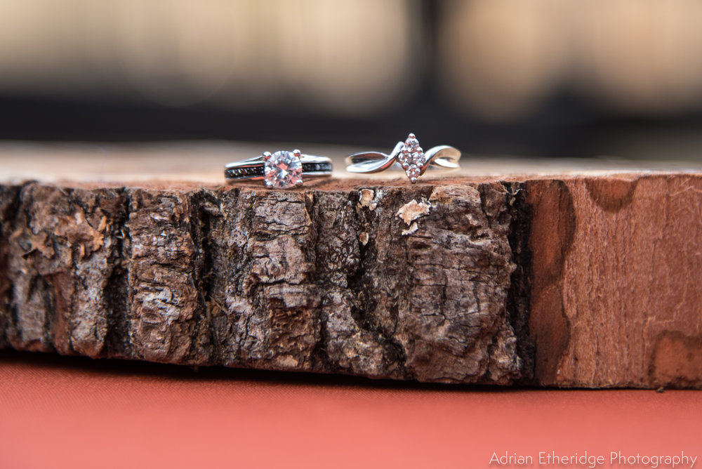 TerriJodi_Wedding_Vendors online-28.jpg