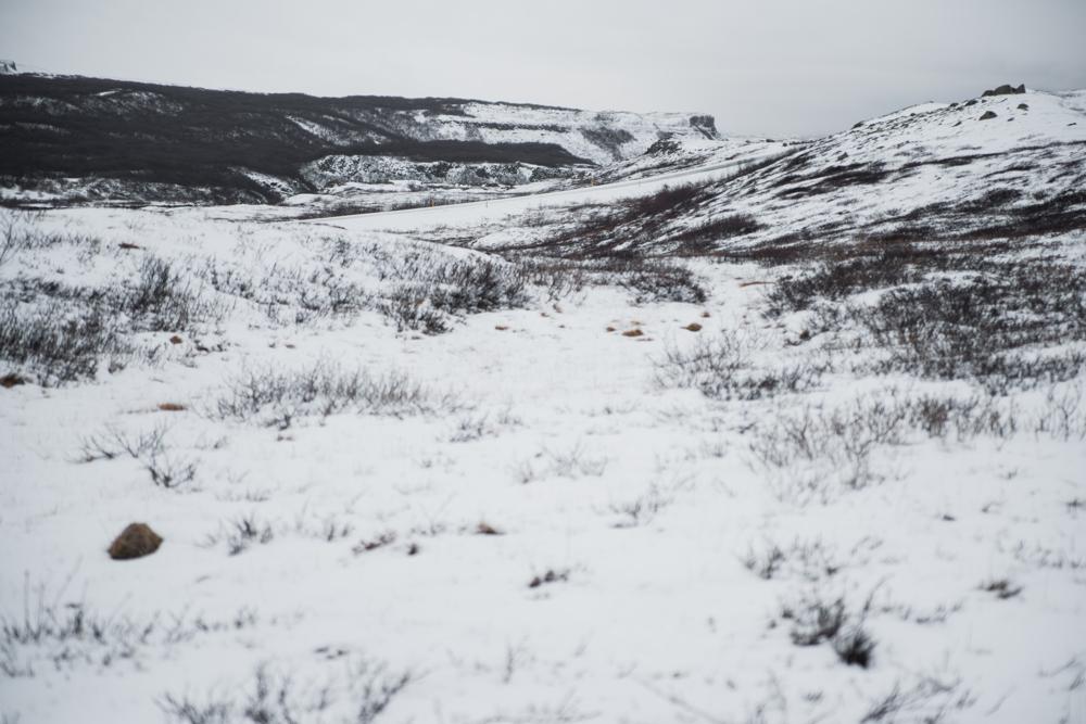 Iceland blog 46.jpg