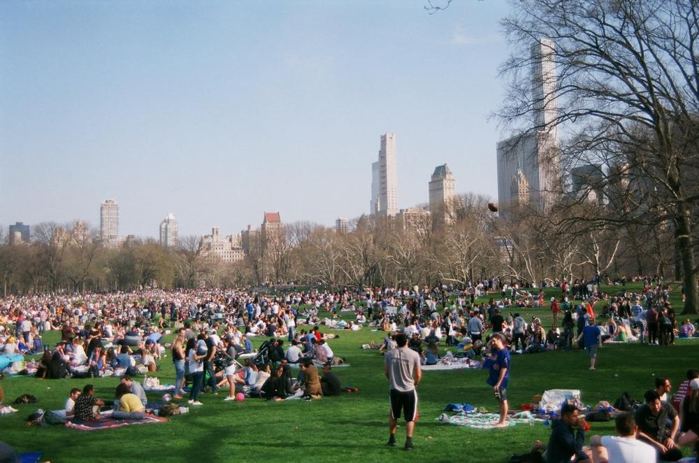 NYC film blog 42.jpg
