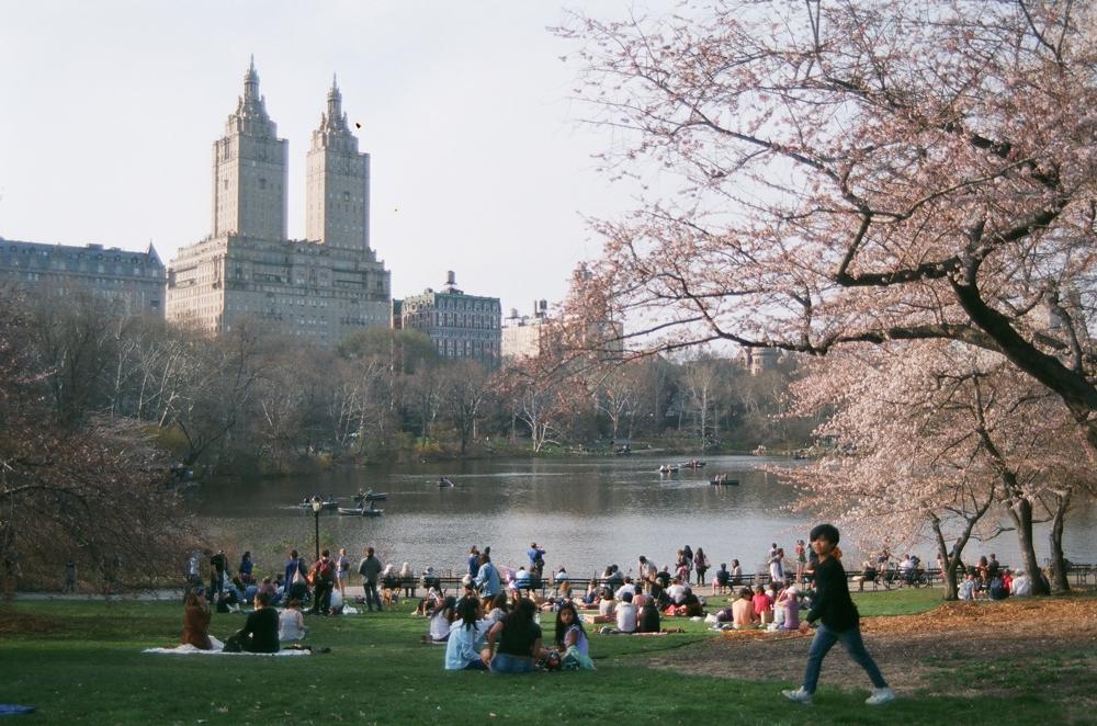 NYC film blog 45.jpg