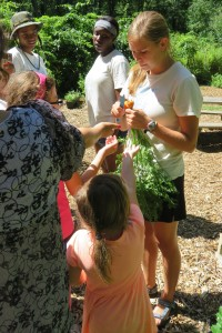 Emily Ripley cuts carrot for campers