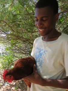 Van holding chicken