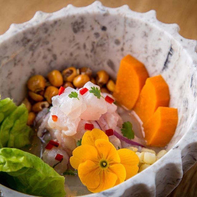 @aguaysaldf nos comparte las fotos de sus deliciosos platillos de sus dos menús para @buenprovecho_cdmx. No te los pierdas y reserva tu mesa dn @opentable o llamando al restaurant 🐟🐟🐟