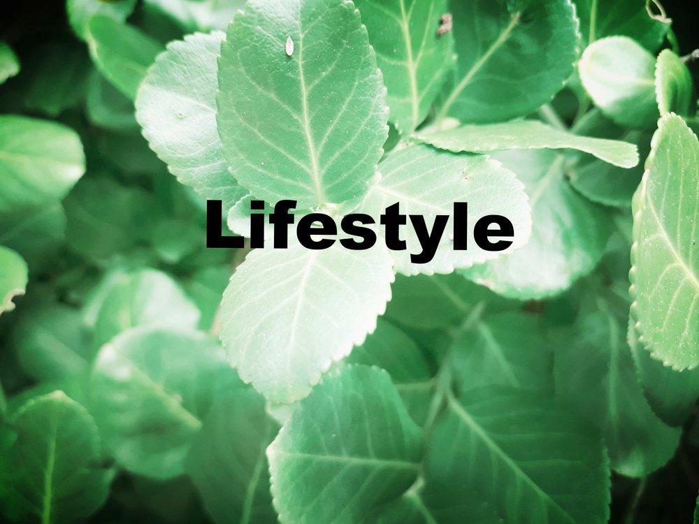 plantpic3.jpg