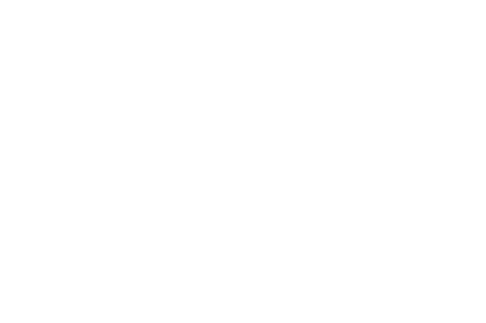 OFFICIAL SELECTION - Gold Coast Film Festival - 2019 (2).png