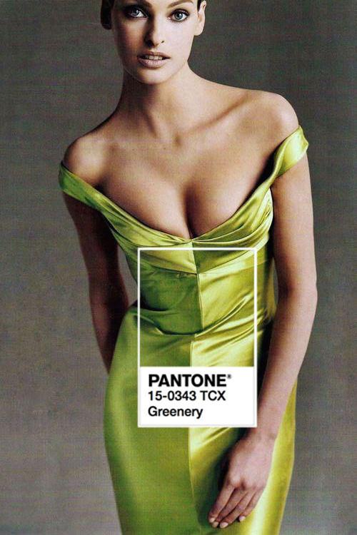 greenery-pantone-color-of-the-year-2017.jpg