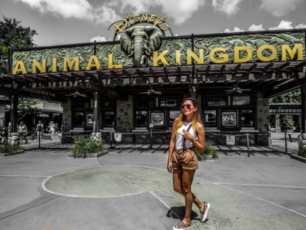 disneyland millenials blogger travel orlando animal kingdom