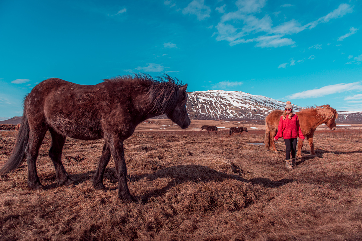 WHAT TO WEAR IN ICELAND - CAROS EDITORIAL