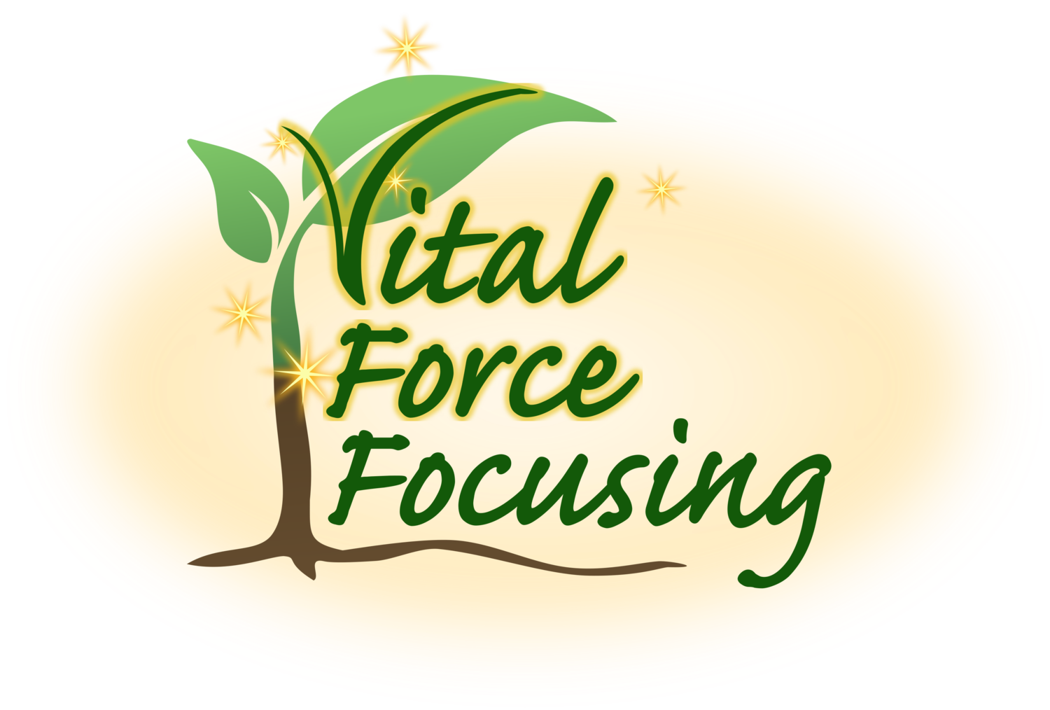 Vital Force Focusing