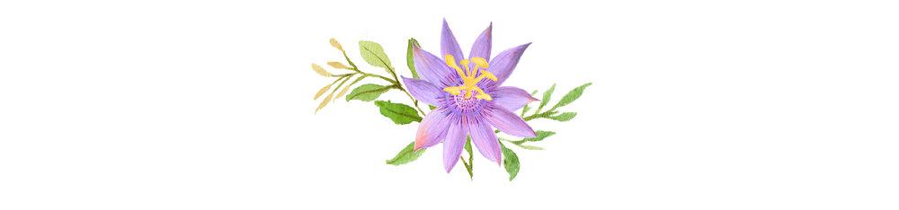 Courtney Dixon Logo Image flower only.jpg
