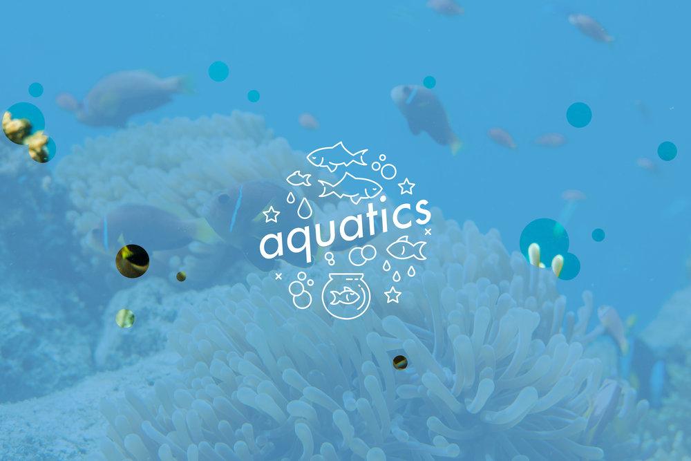 Aquatics-3.jpg