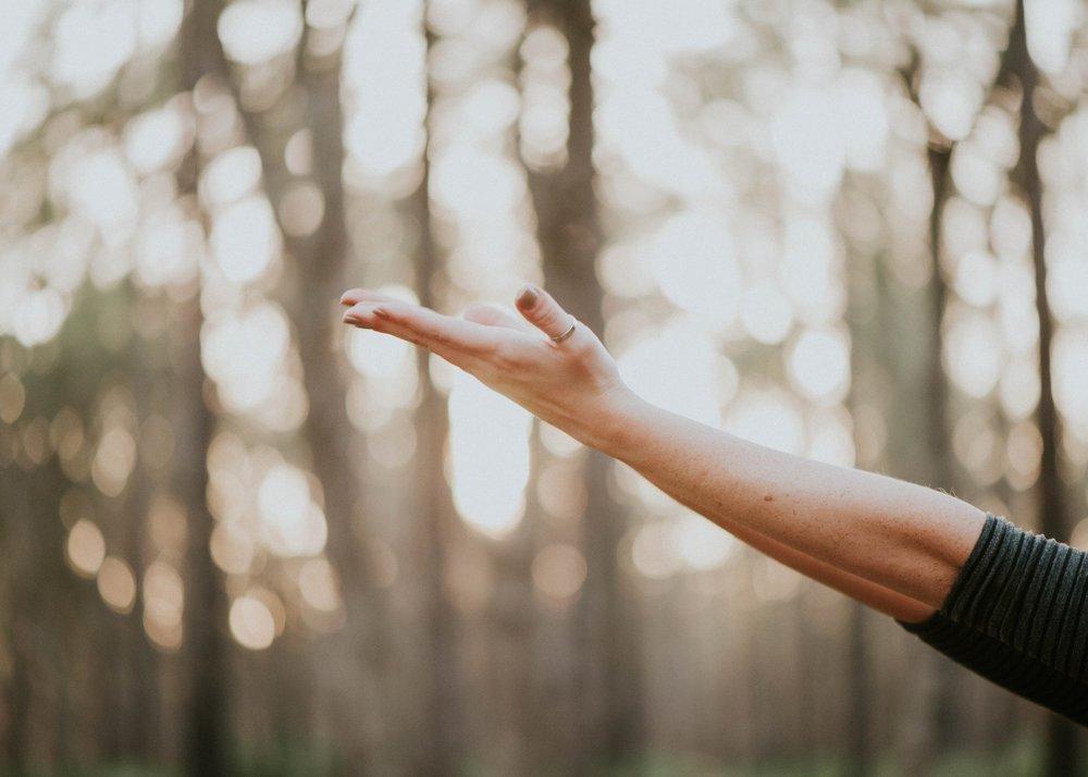 2. De l'urgence de décélérer et de se reconnecter au corps - Dans une société en accélération, de plus en plus complexe, incertaine et digitale, il est crucial de reconnecter corps et esprit, afin d'apprendre à gérer son stress, sa santé et son énergie, de retrouver sens et alignement, mais aussi de développer de nouvelles formes d'intelligences et de talents.