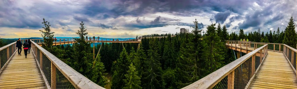 Panorama view of the treetop walk Bachledka