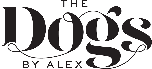 The Dogs By Alex - dog photographer based in London