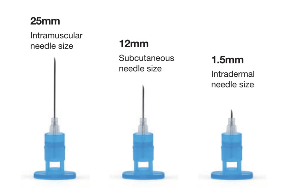 ID, SC, IM – APIJECT HANDLES THEM ALL - • • • • • • • • • • • • • •The ApiJect needle hub supports all major needle sizes.What's more, injections requiring intradermal delivery are as straightforward as a standard subcutaneous or intramuscular shot, and do not require the Mantoux procedure.