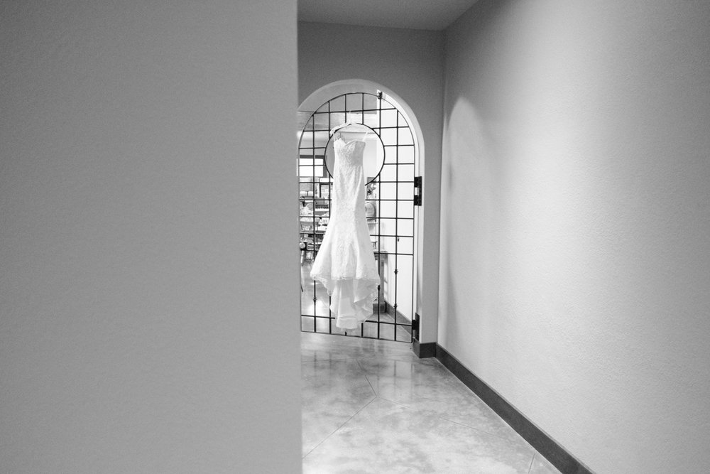2017_BAP_NatalieShawn_DC_Estate_Wedding-7.jpg