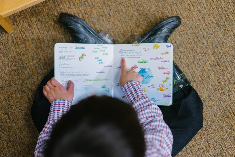 adorable-book-boy-1250722 (1).jpg