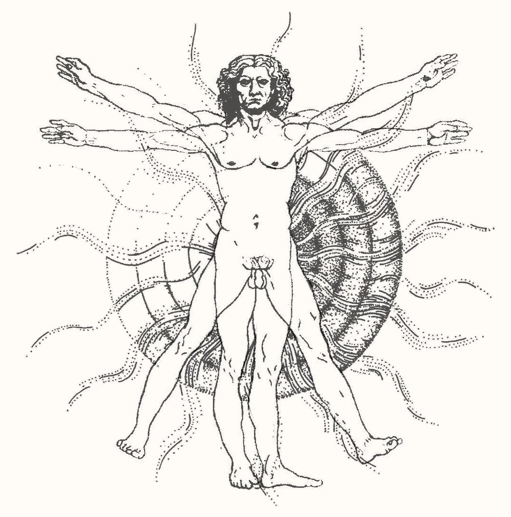 Leonardo layers.jpg