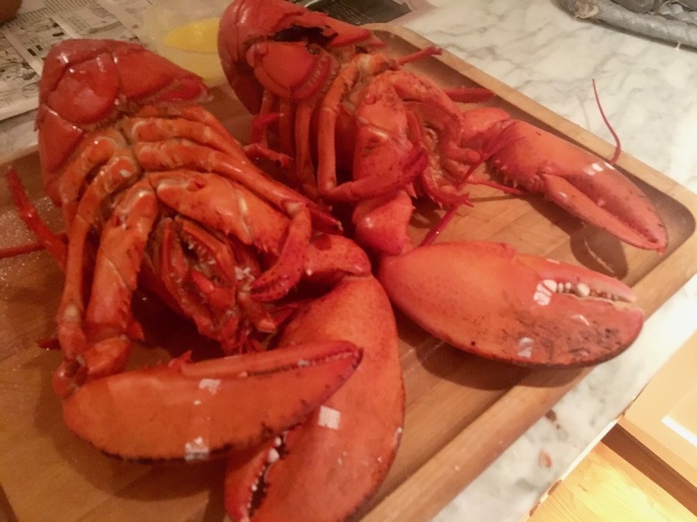 BOILED LOBSTER WITH LEMON BUTTER SAUCE