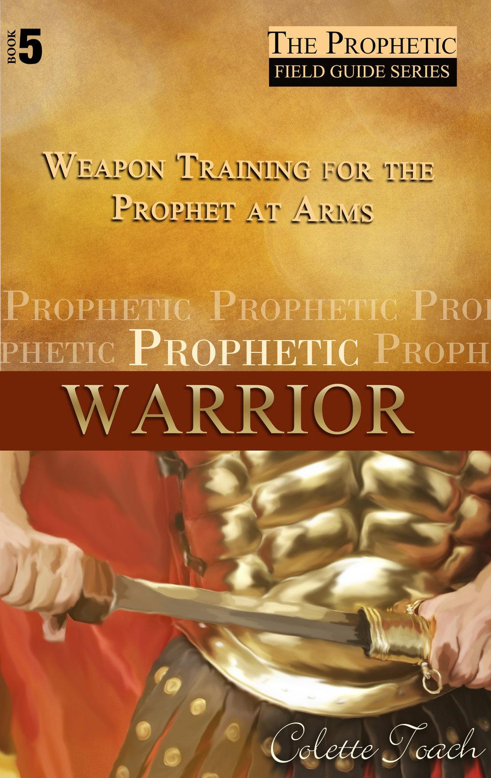 Prophetic_Warrior_Front.jpg