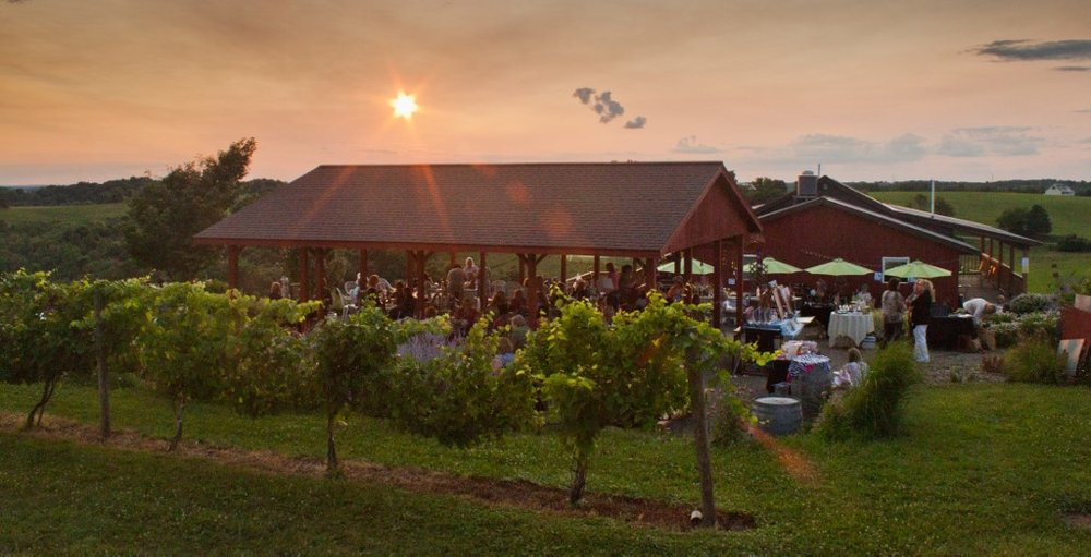 - 2285 Rix Mills Road New Concord, Ohio 43762Click for Map(740) 872-3791terracottavineyards.comAppalachian Wine TrailMuskingum County