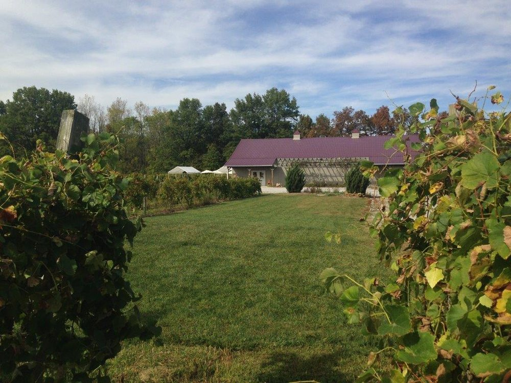 - 3510 Clark Shaw RoadPowell OH 43065Click for Map740-362-5741soinevineyards.comCapital City Wine TrailDelaware County