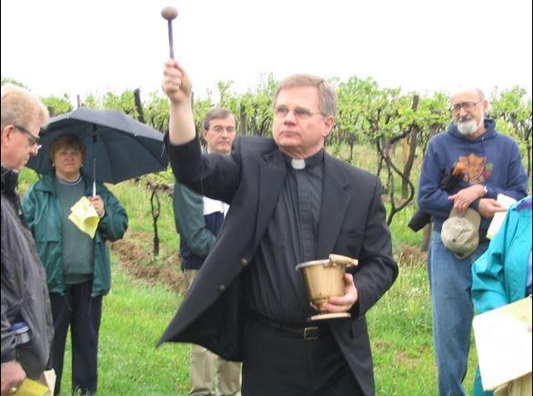 blessing of the vines.JPG