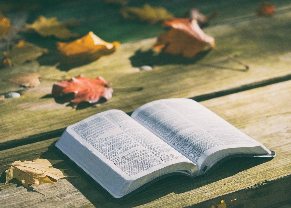 bible-bench.jpg