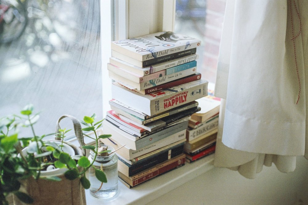 books-window-plant.jpg