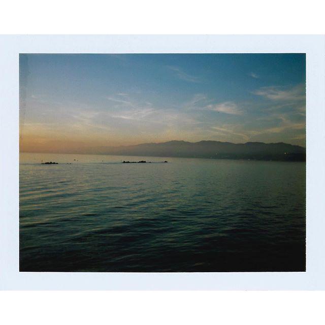 Finally scanned some Polaroids from almost a year ago, taken a few mins apart | Polaroid 104 Land Camera | Fujifilm FP-100c #film #instantfilm  #polaroid #fujifilm #fp100c #believeinfilm #filmphotography #believeinfilm #filmisnotdead
