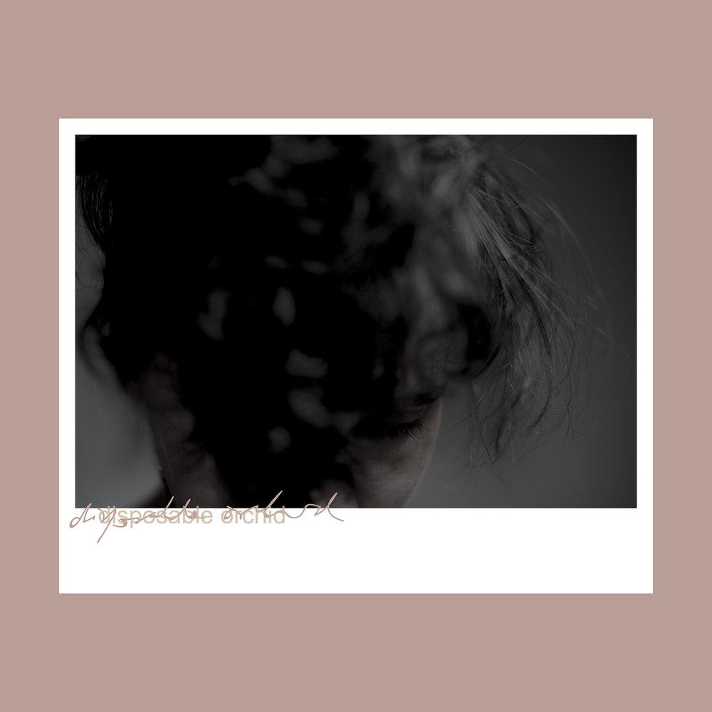 _AZS9110 rd polaroid 2000PROD.jpg