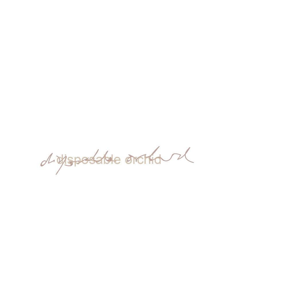 Disposable Orchid Polaroid Signature SQ.jpg