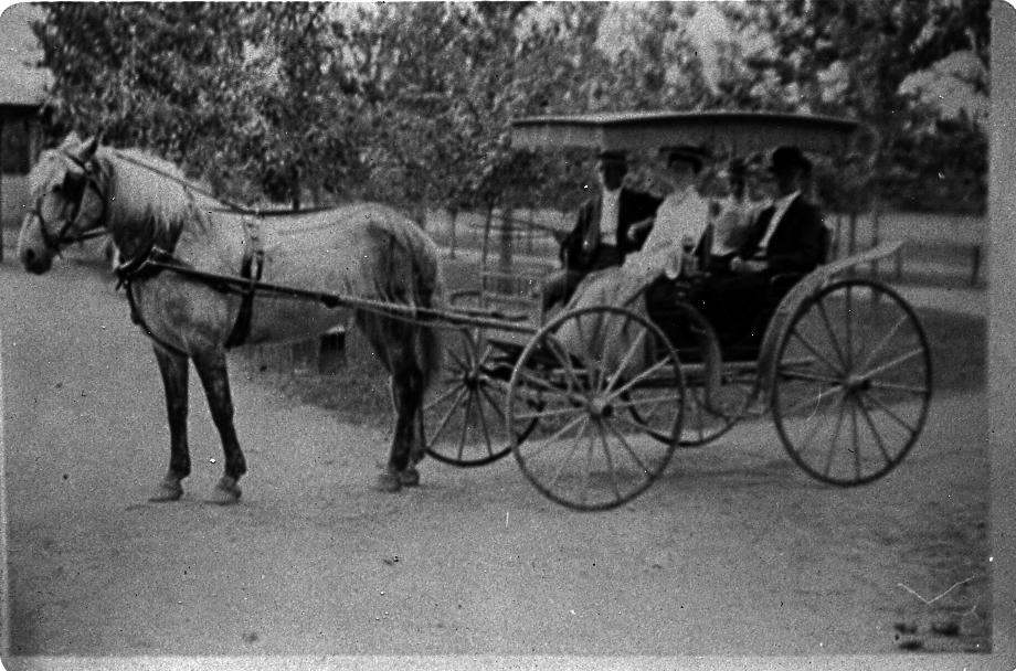 Langley's Corner, Aura Road and Ellis Mill Road, near Ewan, c1900[HTHS: Helen Grodotzke Collection]