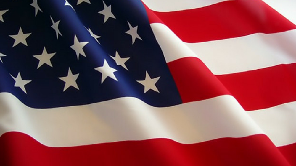 A Patriotic Salute.png