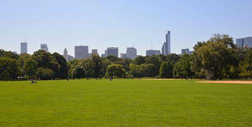great lawn central park south view