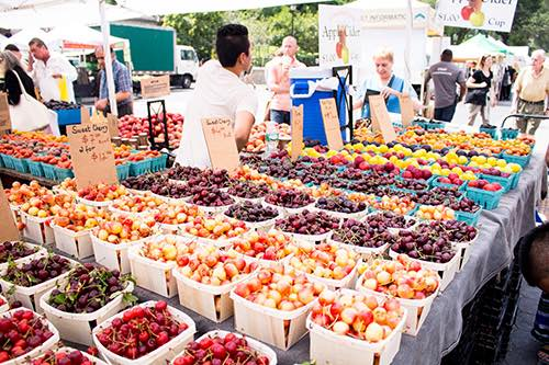 union square greenmarket
