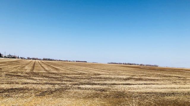 Elkton-Farm-1.jpg