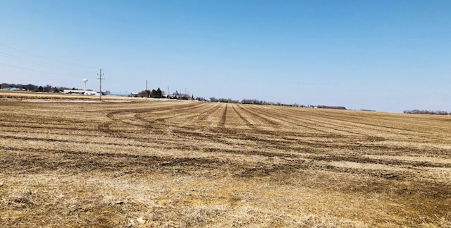 Elkton-Farm-2.jpg