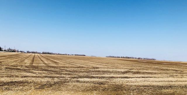 Elkton-Farm-3.jpg