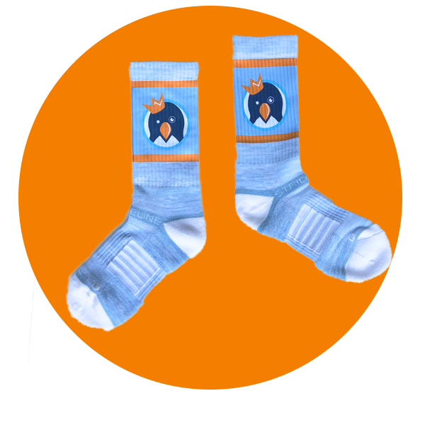 The-Icebox-Fall-Favorites-Classic-Socks