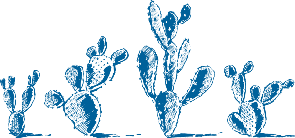 Cactus - 3015 C - small.png