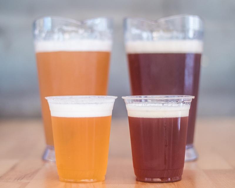 Pitchers+of+Beer+Web.jpg