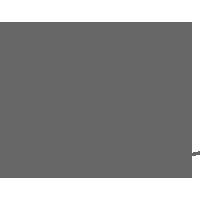 paulapartanen_logo.png