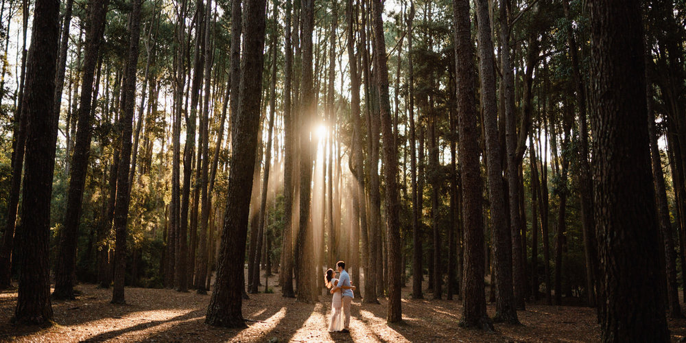 Watagans Pine Forest Engagement Shoot Hunter Valley 14