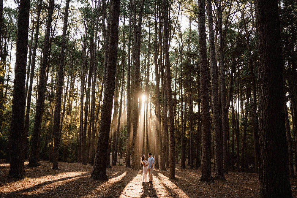 Watagans Pine Forest Engagement Shoot Hunter Valley 08