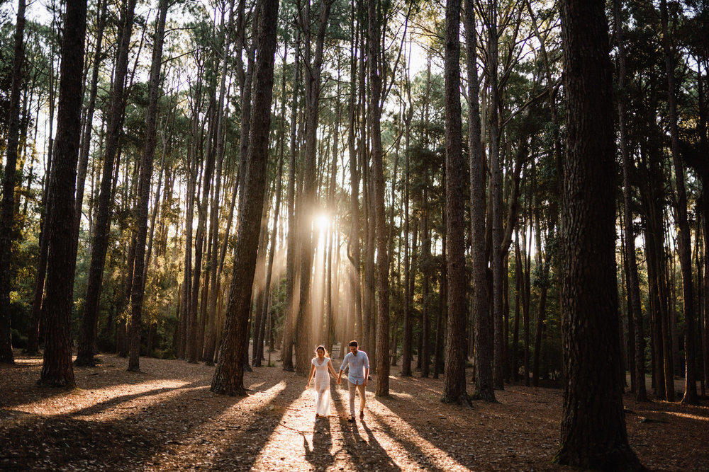 Watagans Pine Forest Engagement Shoot Hunter Valley 16