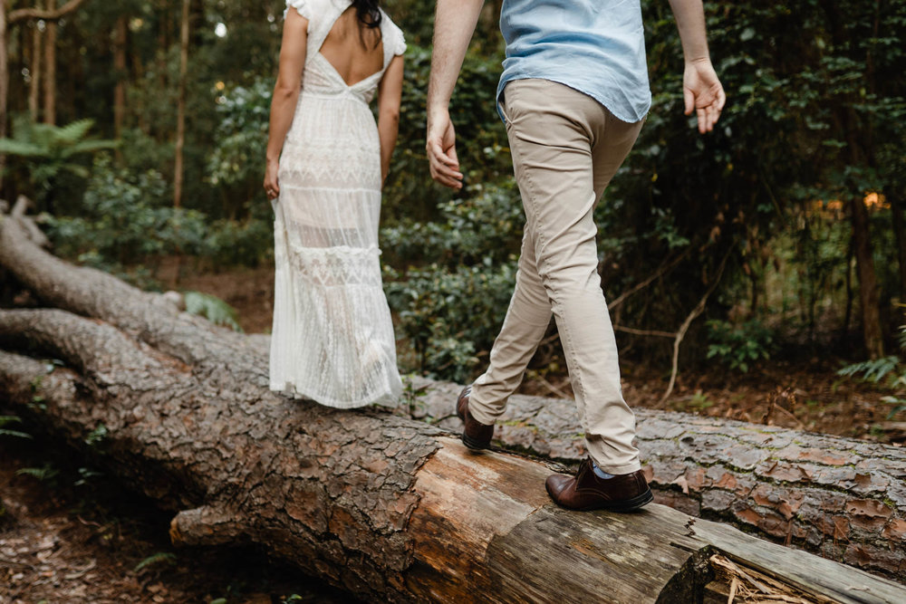 Watagans Pine Forest Engagement Shoot Hunter Valley 19