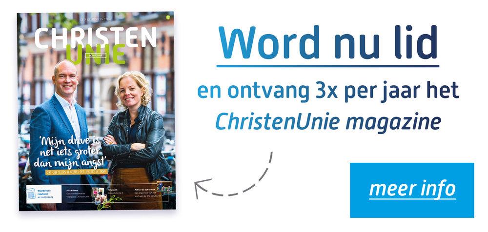 word nu lid - knop magazine site.jpg